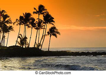Hawaii - Kauai Hawaii Poipu beac