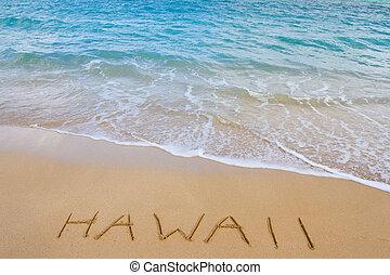 hawaii, strand, och, vågor