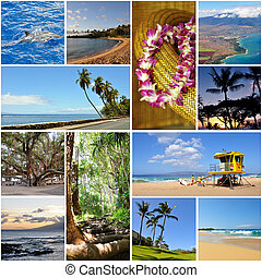 Hawaii travel collage