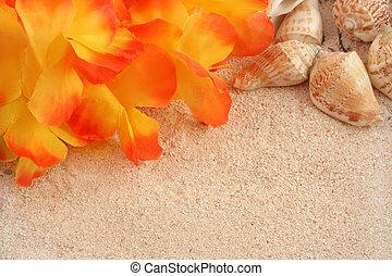 hawaiian beach background with tropical sand, seashells and...