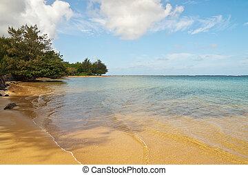 Hawaiian Beach on the island of Kauai
