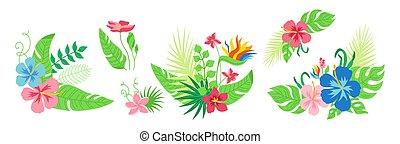 Hawaiian bouquet tropical flowers set vector