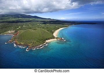 hawaiian , coast.