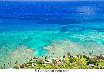 Hawaiian Coast from High Up