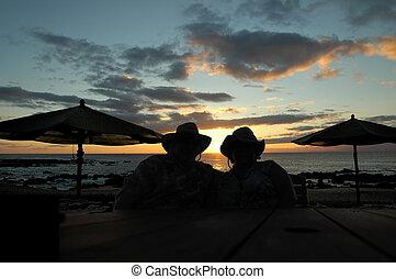 Hawaiian Cowboy Suns