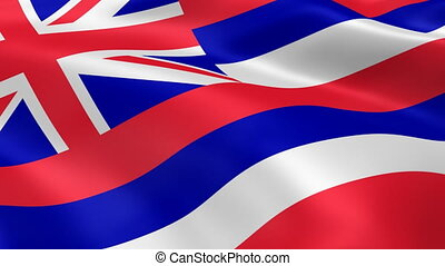 Hawaiian flag in the wind