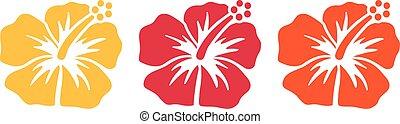 Hawaiian flowers - hibiscus blossoms