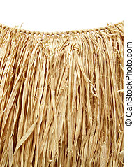Hawaiian luau - grass hula skirt - grass hula skirt for a...