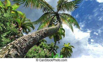 Hawaiian paradise