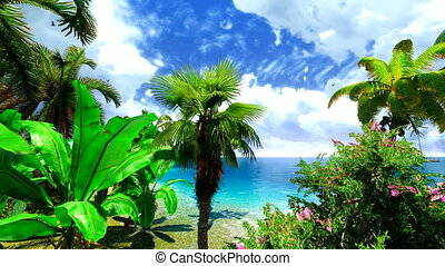 Hawaiian paradise - Tropical paradise