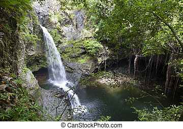 Hawaiian Rainforest Waterfalls, Maui