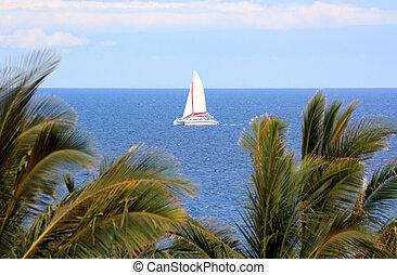 Hawaiian Sails - Luxury Catamaran Boat Tour of Big Island ...