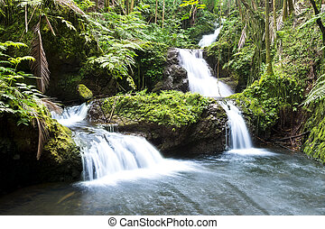 hawaiin, chute eau