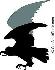 hawk - silhouette of hawk