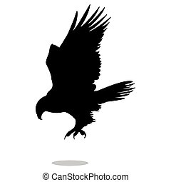 Hawk eagle falcon bird black silhouette animal. Vector...