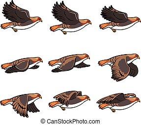 Hawk Flying Animation Sprite - Vector Illustration of a Set...