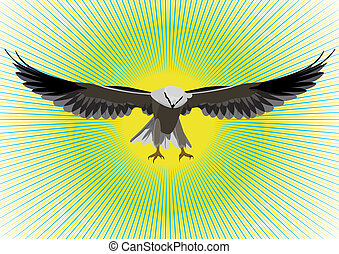 Hawk - Feathered predator with my wings on an abstract...