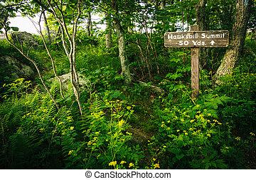 Hawksbill Summit sign, in Shenandoah National Park, Virginia.