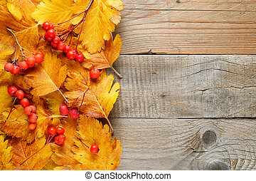 Hawthorn autumn leaves and berries on wooden table top view