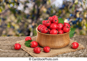 Hawthorn berry with leaf in a bowl on wooden table with a blurry garden background