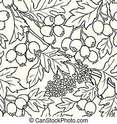 hawthorn, seamless, padrão