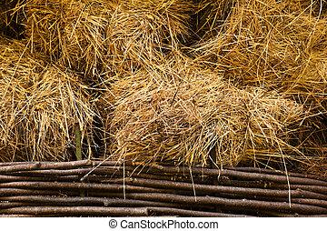 hay at haylofts close-up as a background