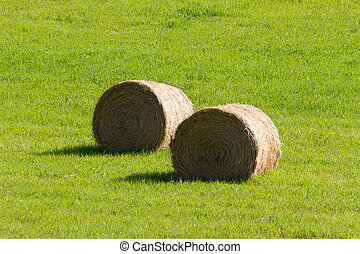 Hay Bale and green grass
