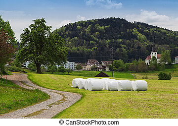 hay bale at green field in a swiss village