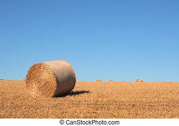 Bale of hay in a field on a hot sunny summer day