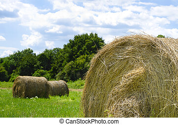 hay bale close up out in the field