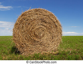 Hay Bale - Hay bale, green grass and blue sky