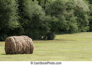 Hay Bale in a Pasture