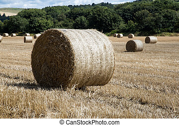 Hay Bale in Field of Stubble