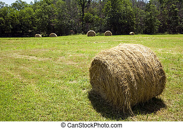 Hay bale in field.