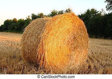 hay bale in setting sunlight