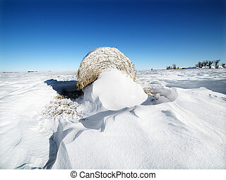 Hay bale in snow.
