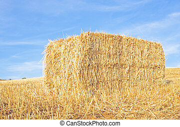 Hay bale in the fields from Portugal