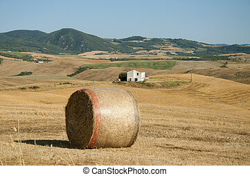 Hay Bale in the Tuscan countryside