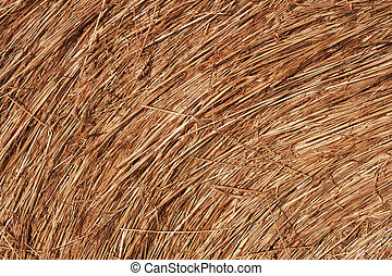 Hay Bale Macro - Close-up of a bale of hay with rich...