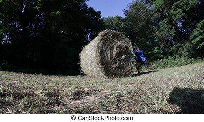hay bale man - sporty man pushing hay-bale huge effort...