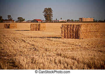 Hay Bale - Bundled block of hay closeup