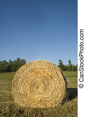 Hay Bale Roll