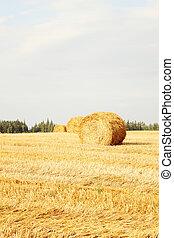 Hay Bale Scenery - Beautiful farm Hay Bale Scenery. Autumn...
