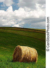 Hay bale - Single hay bale in a green field under grey ...