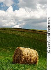 Hay bale - Single hay bale in a green field under grey...