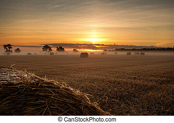 hay bales at sunrise landscape