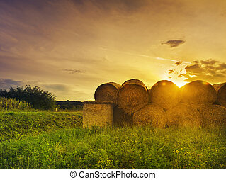 Hay Bales - Hay bales at sunset