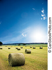 Hay bales in recently harvested field with blue sky