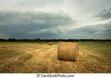 Hay bales in the field and cloudy sky