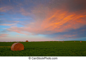 Hay bales in the field at sunset